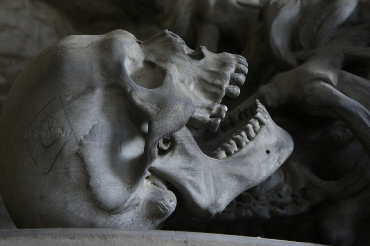 canibalismo humano