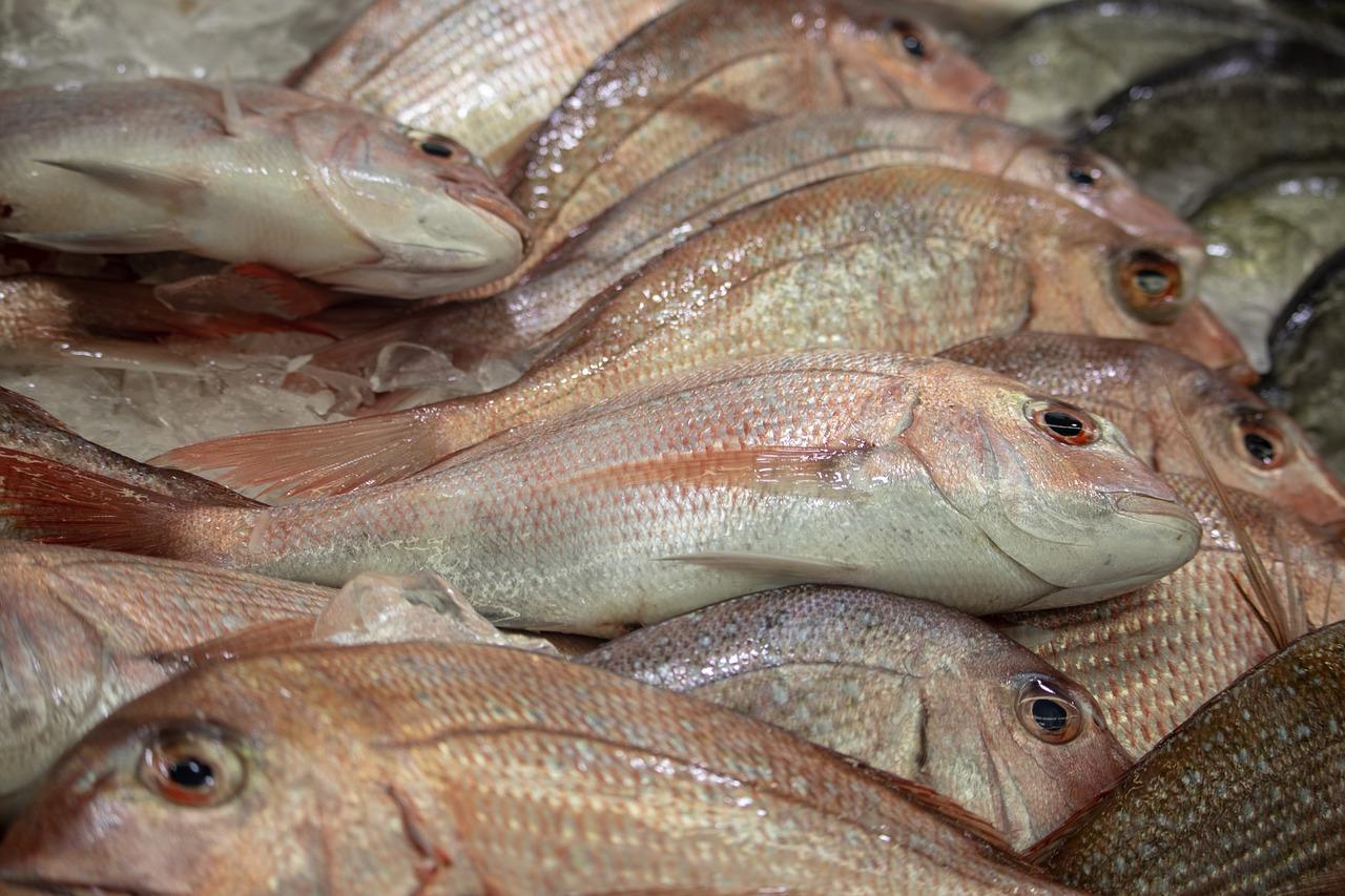 Genes odor de peixe