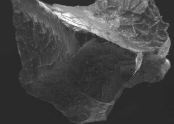 fragmento de cérebro vulcão vesúvio