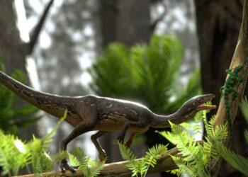 incrível dinossauro