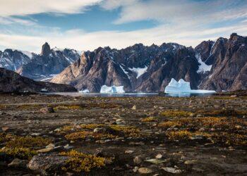 Groenlândia