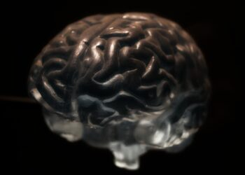 A própria formação do nosso cérebro pode ser responsável por não conseguirmos lembrar do começo de nossa infância. (Imagem de Patricio Silva por Pixabay)