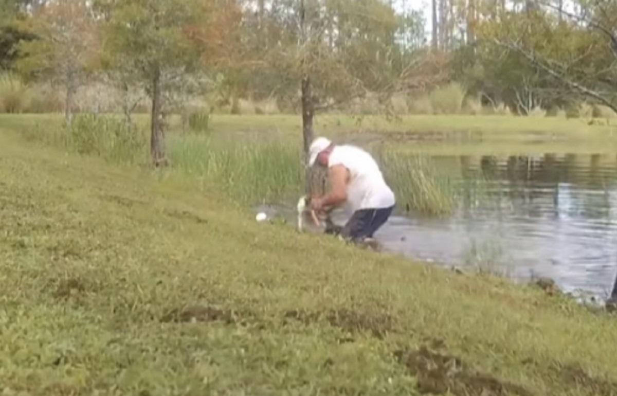 homem salva cão de jacaré na Flórida