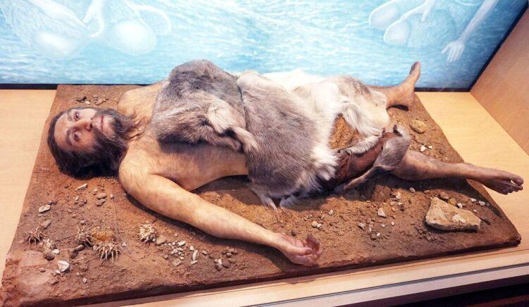 Um modelo de neandertal no Museu Nacional de Ciências Naturais da Espanha. (Tiia Monto / Wikimedia Commons).
