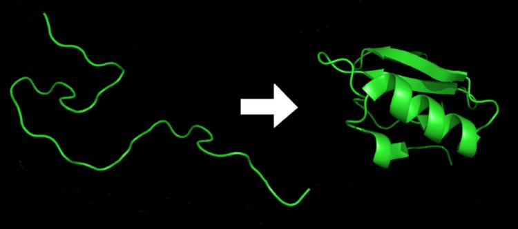 A empresa DeepMind está usando sua inteligência artificial para prever o formato de proteínas com mais de 90% de similaridade.  (DrKjaergaard)