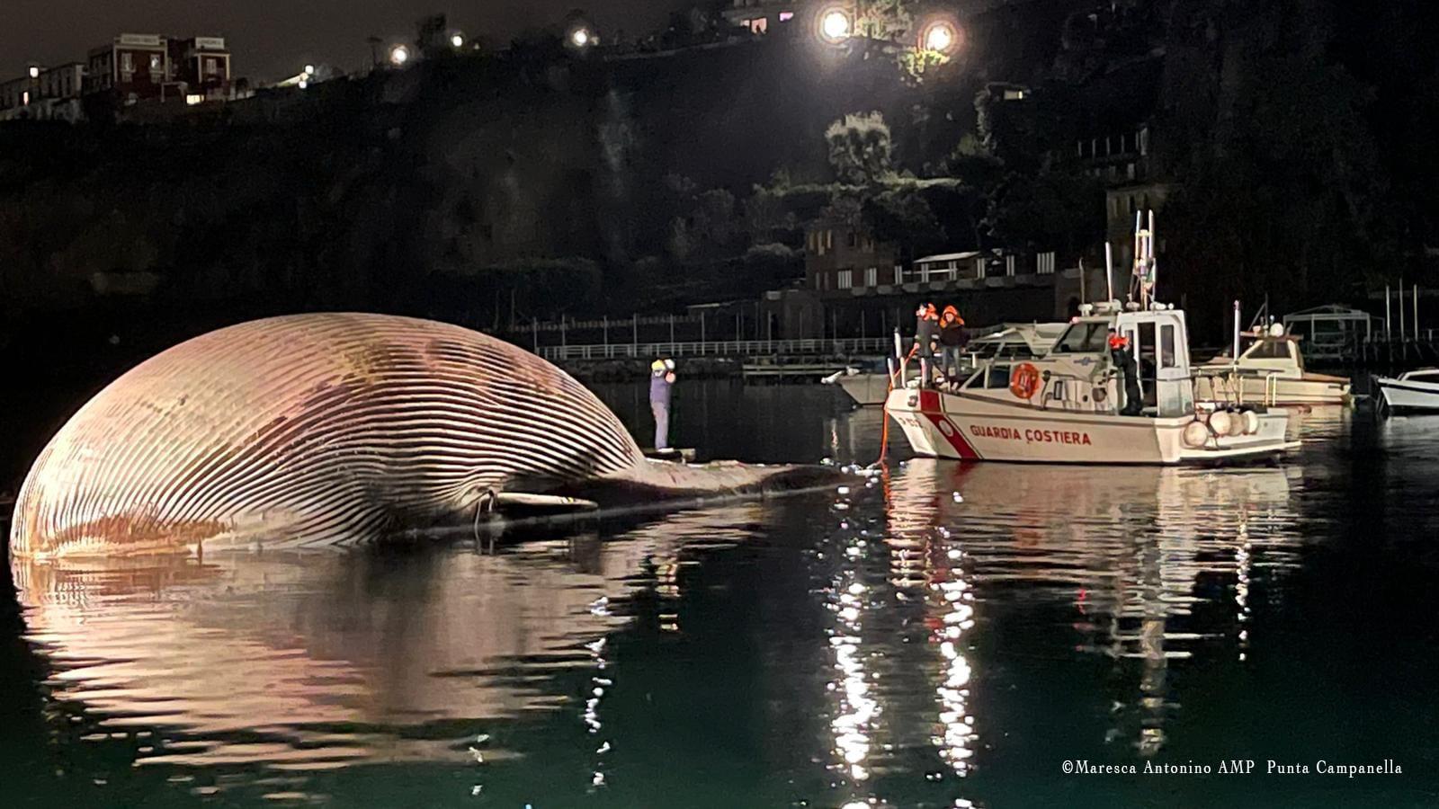 (Guarda Costeira da Itália).