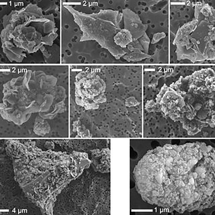 Pequenas partículas de jarositas vistos sob microscópio