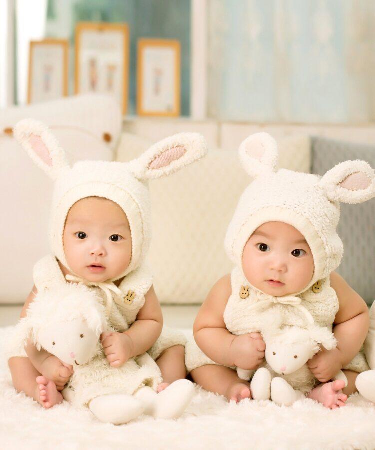 Novas pesquisas mostram que gêmeos idênticos na verdade não são clones perfeitos um do outro, geneticamente.   (Imagem de 1035352 por Pixabay)