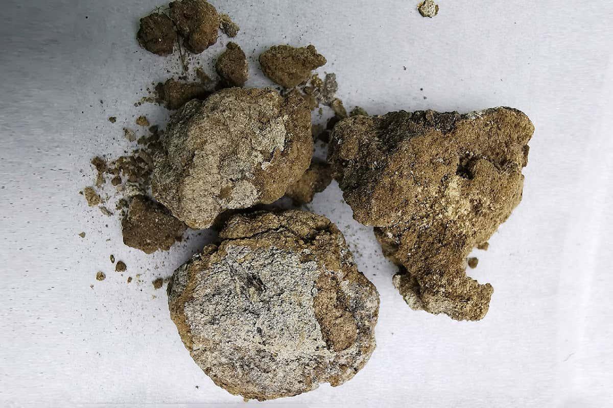 Creme facial de quase 3.000 anos leite lunar