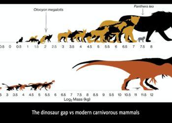 dinossauros de tamanho médio