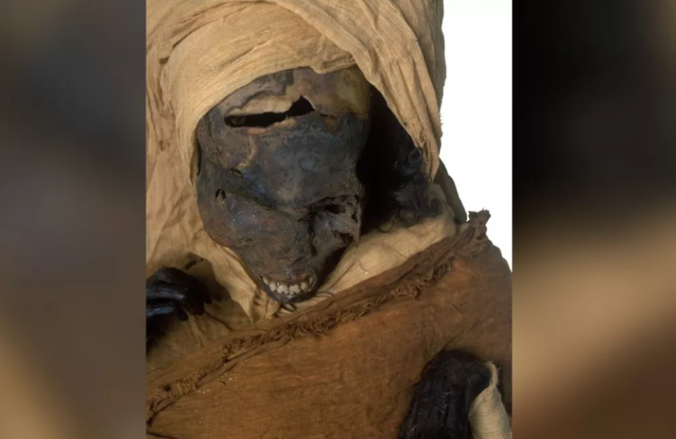 Múmia de Seqenenre Taa II. (Sahar Saleem)