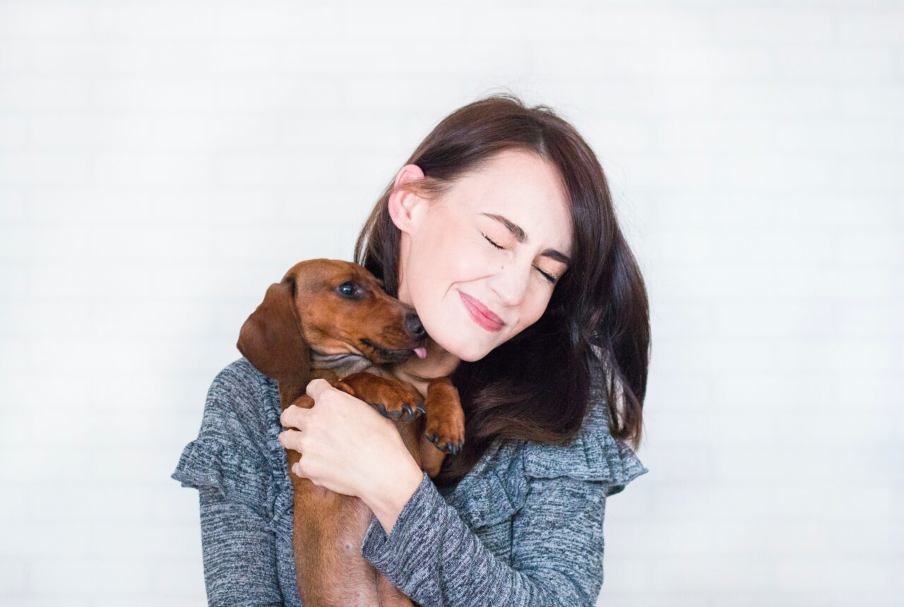 Laço entre cães e humanos