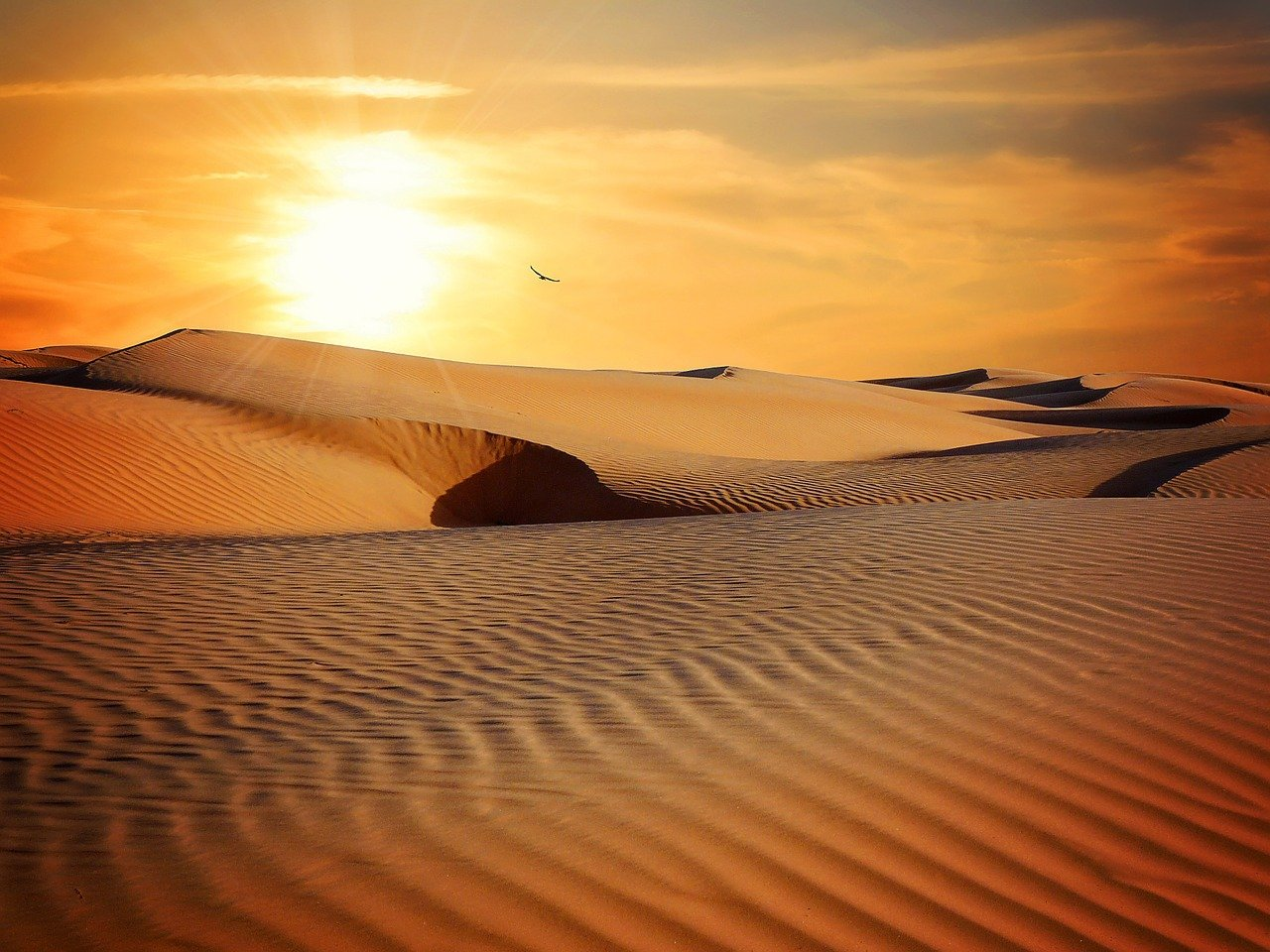 temperatura do deserto à noite