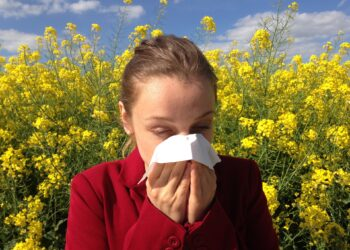 Proteína do sistema nervoso pode fornecer insights para o tratamento de alergias. (Imagem de cenczi por Pixabay)