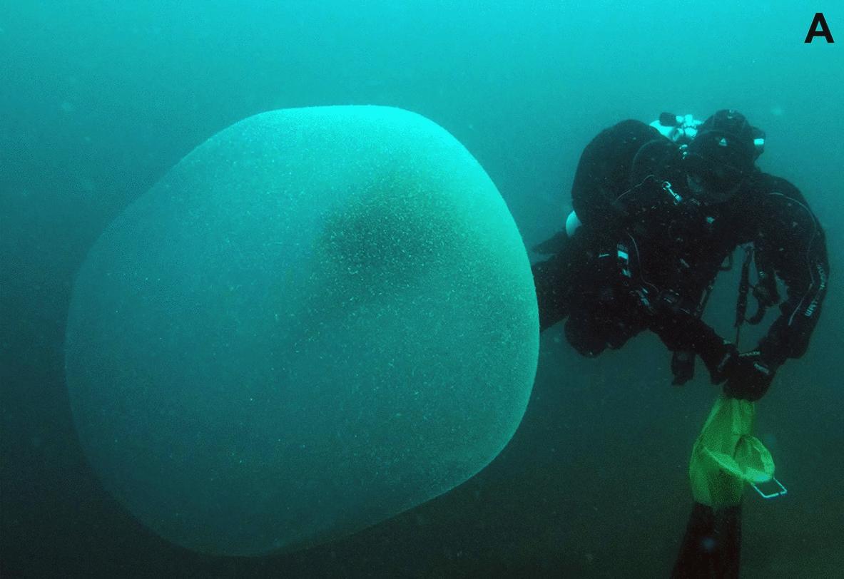 Uma foto de uma das enormes bolhas misteriosas avistadas perto da Noruega. (Crédito da imagem: Ringvold, H., Taite, M., Allcock, AL et al.)