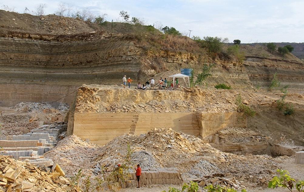 Fósseis de mais de 100 milhões de anos são encontrados no Ceará