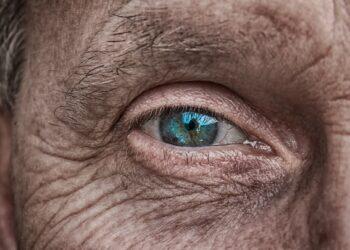 Usando proteínas recombinantes de algas, pesquisadores conseguiram recuperar parcialmente a visão de um paciente cego há 40 anos. Imagem: analogicus/ Pixabay