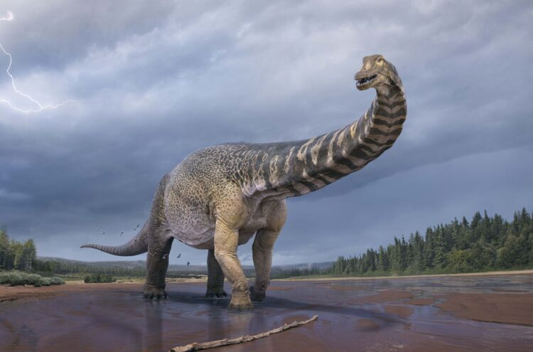Australotitan cooperensis. Imagem: Vlad Konstantinov/Eromanga Natural History Museum
