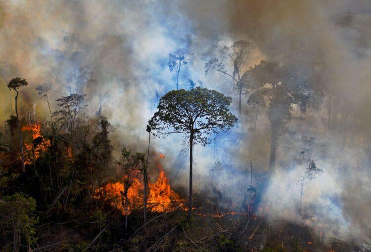 Fumaça de queimada na reserva da floresta amazônica, ao sul de Novo Progresso, no estado do Pará, em 15 de agosto de 2020. Imagem: Carlo de Souza/AFP