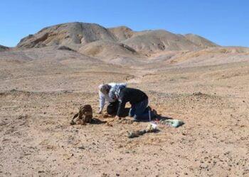Arqueólogos encontraram restos mortais em deserto chileno