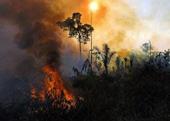 Um incêndio na reserva da floresta amazônica no estado do Pará, Brasil, em 15 de agosto de 2020. Imagem: Carl De Souza / AFP via Getty Images